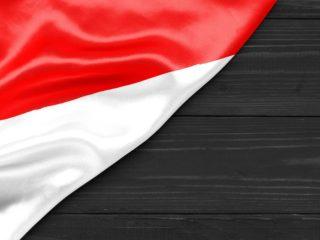 印度尼西亚调查网站
