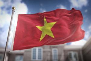 在越南的成就和特点